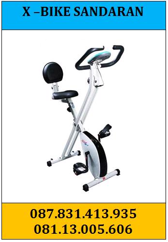 x-bike-sandaran-3